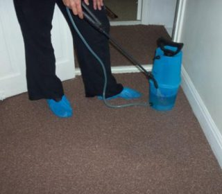 Carpet Cleaners in Aughton